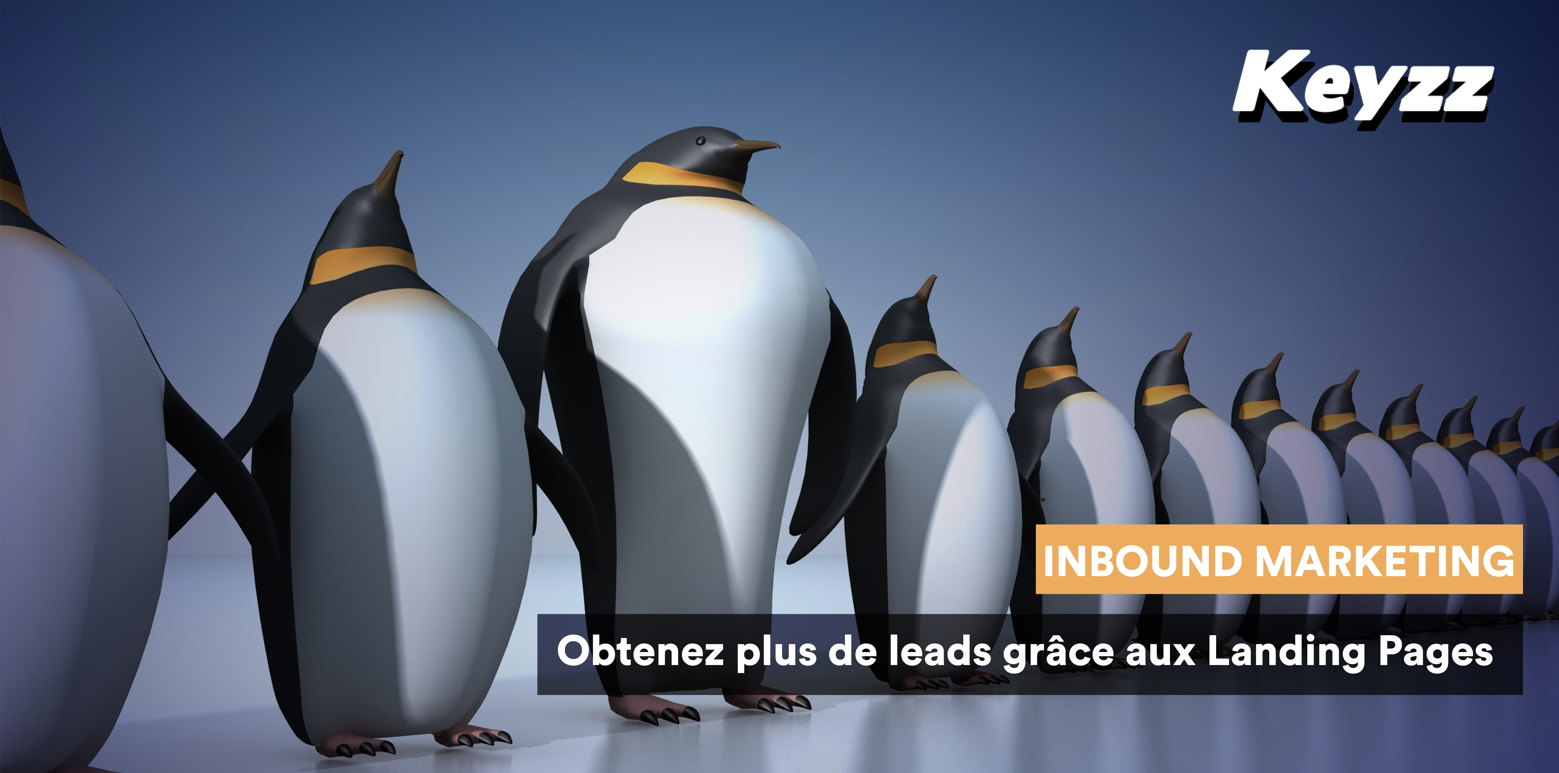 inboud marketing leads landing page pingouin